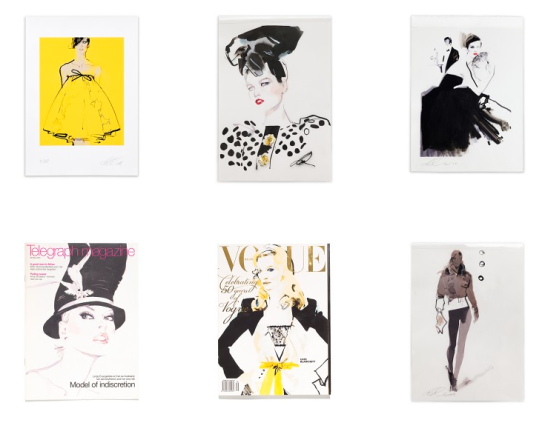 David Downton FIG Prints