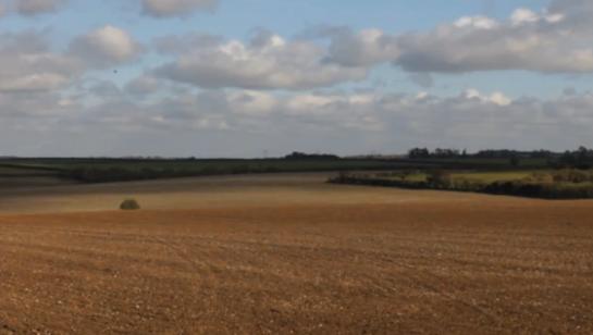 PJ Harvey The Glorious Land Field scene