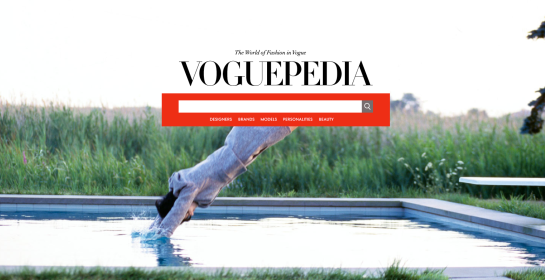 Voguepedia Search Page