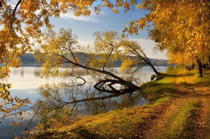 Alexander Kitsenko Ukrainian Autumn
