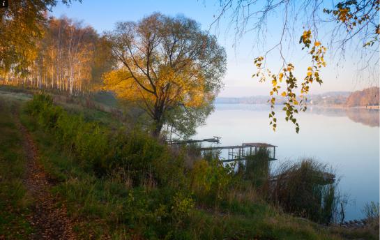 Alexander Kitsenko - Ukrainian Landscape